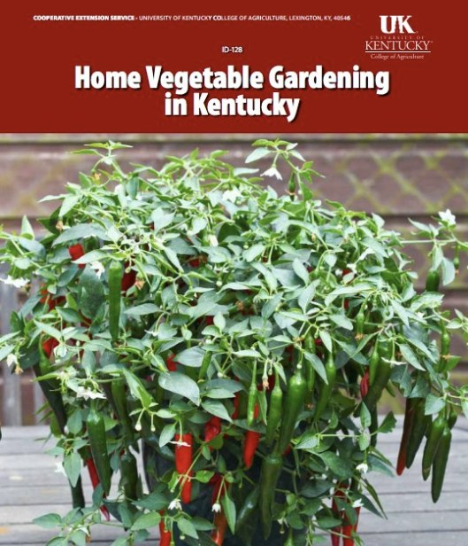 Home Vegetable Gardening in Kentucky