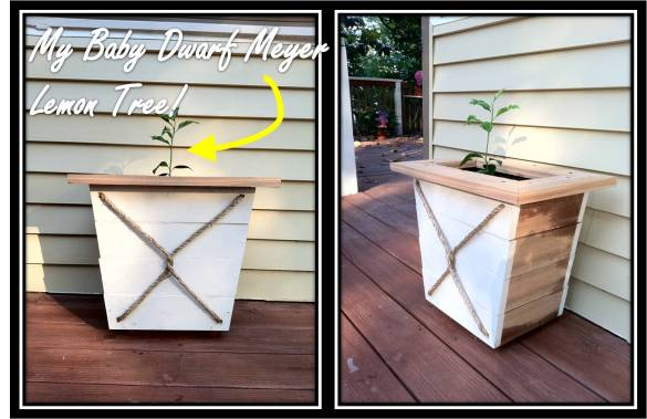 Tree Planter Box Plans Wood Box Planter Plans